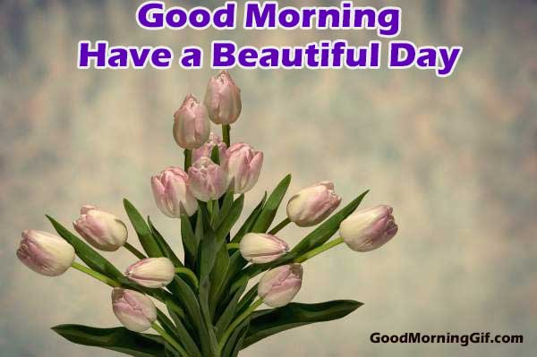 Beautiful Good Morning Images with Flowers for Whatsapp