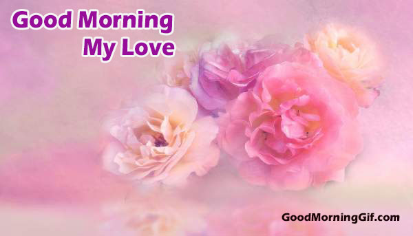 Best Good Morning Wishes With Pink Flower