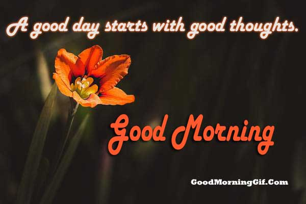 Best Quotes On Good Morning
