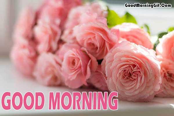 Good Morning Flower Pic