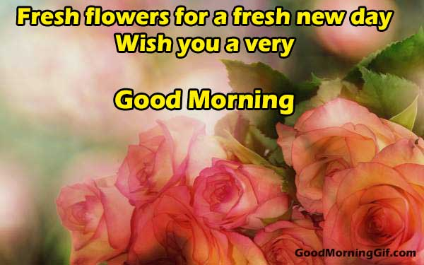 Good Morning Fresh Flowers Image