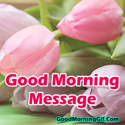 Good Morning Messages, Good Morning MSG & Text Messages