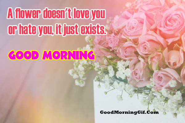 Good Morning Msg for Lover
