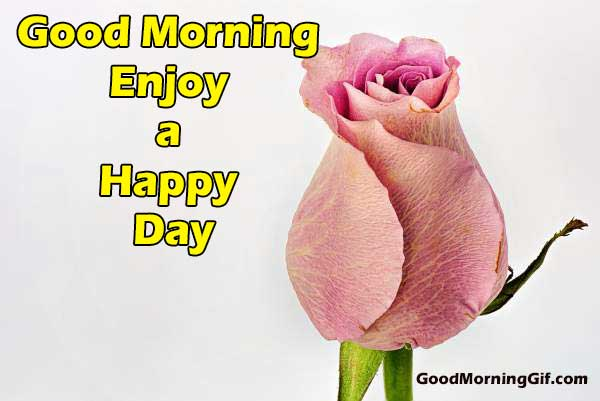 Nice Good Morning Flower Image