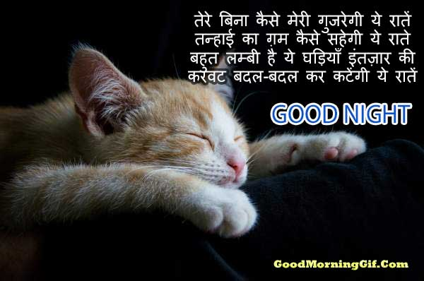 New Good Night shayari image