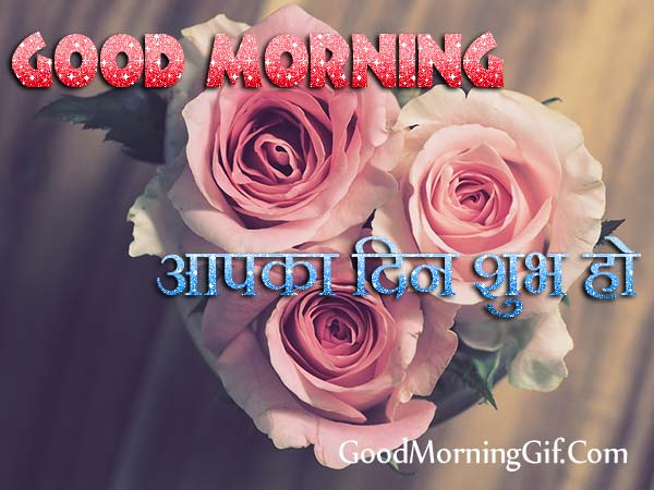 Good Morning Rose Flower